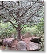 Silver On Trunk Metal Print