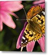 Simple Butterfly Metal Print