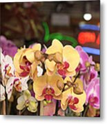 Sixth Avenue Orchids Metal Print by Denice Breaux