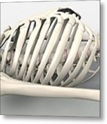 Skeleton's Torso, Artwork Metal Print