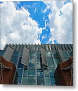 Sky Watcher Metal Print