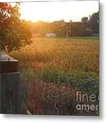 Sleepy Golden Autumn Metal Print