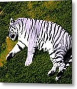 Sleepy Tiger 2 Metal Print