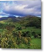 Slieve Bearnagh, Mourne Mountains, Co Metal Print