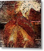 Slowly Dying Metal Print