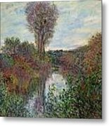 Small Branch Of The Seine Metal Print