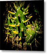 Small Green Cactus Metal Print