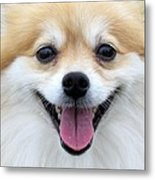Smiley Zoey Metal Print