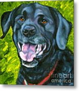 Smiling Lab Metal Print