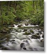Smokey Mountain Stream No.362 Metal Print
