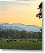 Smoky Mountain Horse Herd Metal Print