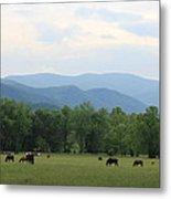 Smoky Mountain Pasture Metal Print