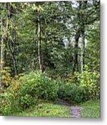 Smoky Mountain Path Metal Print