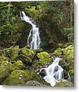 Smoky Mountain Waterfall - Mouse Creek Falls Metal Print