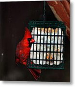 Snack Before The Storm Metal Print