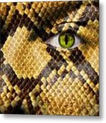 Snake Eye Metal Print by Semmick Photo