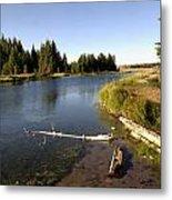 Snake River At Schwabacher Landing  Metal Print