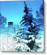 Snow Bow Metal Print