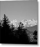 Snow-capped Mountain And Trees Metal Print