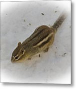 Snow Covered Chippy Metal Print