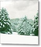 Snow Covered Countryside Metal Print
