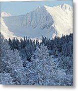Snow Covered Mount Currie From Whistler Metal Print