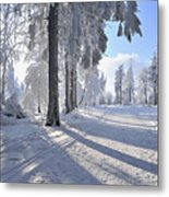 Snow Covered Path, Rennsteig, Grosser Inselsberg, Brotterode, Thuringia, Germany Metal Print