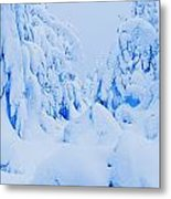 Snow-covered To Vallee Des Fantomes Metal Print