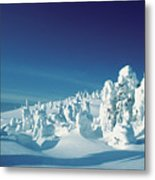 Snow Covered Trees, Yellowstone National Park, Wyoming, Usa Metal Print