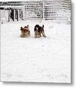 Snow Day Play II Metal Print