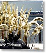 Snow Dust Christmas Card Metal Print