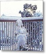 Snow On Grilles Metal Print