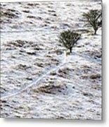 Snow On Moorland Metal Print