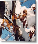 Snow On The Fall Leaves Metal Print
