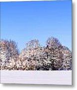 Snow Panoramic Landscape Metal Print