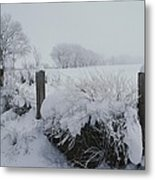 Snow, Rime Ice, And Fog Cover Metal Print