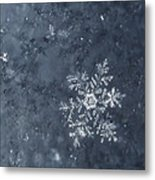 Snowflake In Blue Metal Print