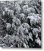 Snowy Branches Winter Metal Print