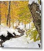 Snowy Brook Metal Print
