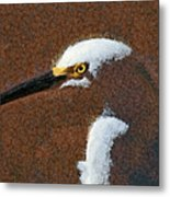 Snowy Egret Profile Painterly Metal Print