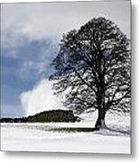 Snowy Field And Tree Metal Print