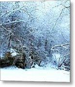 Snowy Morn Metal Print