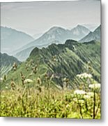 Snowy Mountains And Grassy Fields Metal Print