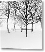 Snowy Trees And Park Benches Metal Print by Meera Lee Sethi