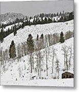 Snowy Wilderness Metal Print