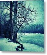 Snowy Woods By A Lake Metal Print