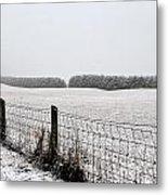 Snowyfence Metal Print