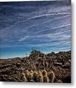 So Lonesome Metal Print by Merrick Imagery