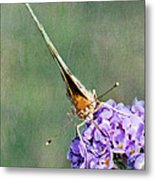 So What Butterfly Metal Print