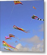 Soaring With The Clouds Metal Print